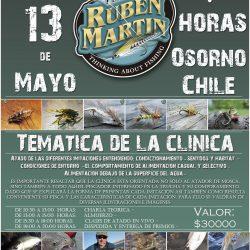 Clinica de atado de moscas en Osorno Chile