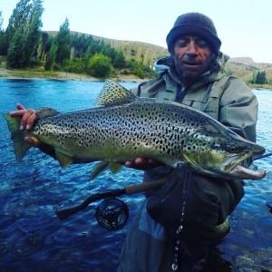 wild bron trout
