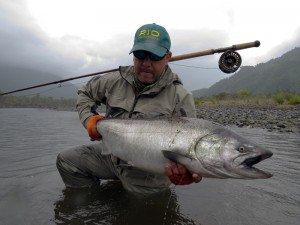 Chrome chinook salmon king
