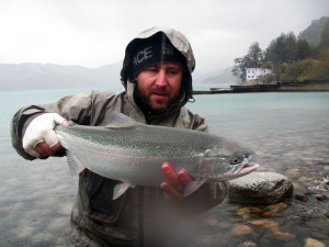 Rainbow trout patagonia argentina
