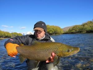 Brown wild trout
